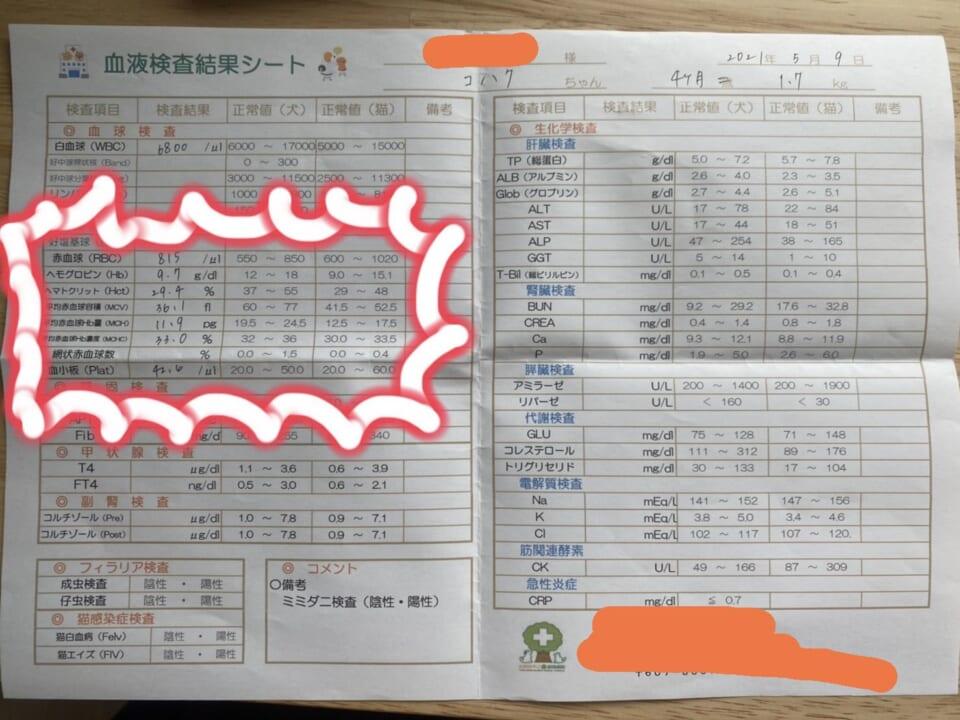 2C8D8449-8A1A-496D-8CC9-AFD64C8E89BC-7451f186