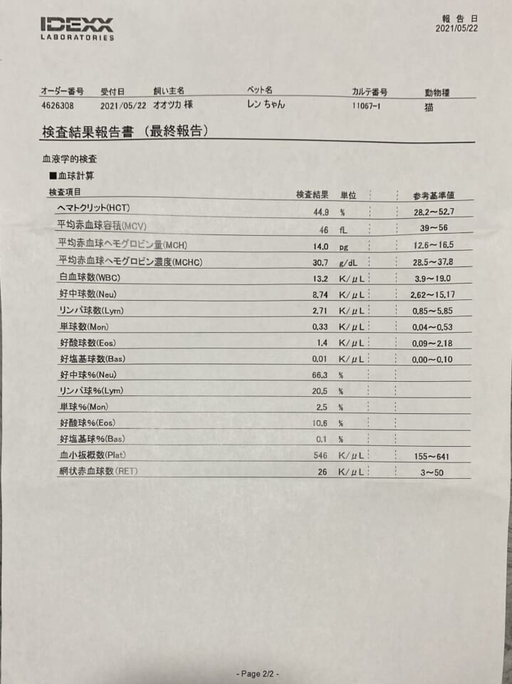 9FEE4FA0-EA94-42FE-AE9B-BF65D2E94AF5-bb5fb787