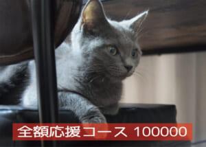 全額応援コース100000-01