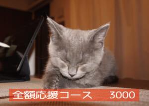 全額応援コース3000-01