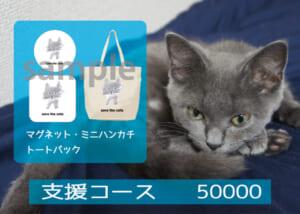 支援コース500001-01