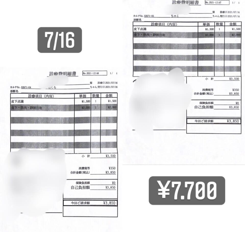 4A9DEDFB-63E7-463E-B02A-EF84727A7CD4-d33c011b