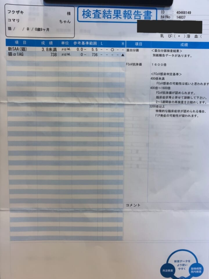 5B86732C-B3C3-489D-B58B-EEEFC3BD14A8-a4d73f48