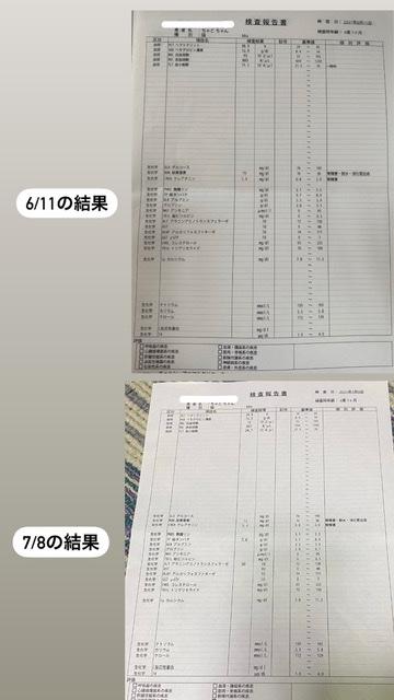 969B775F-9C56-4F3A-B55D-FDC4E7C5E660-fde2275c