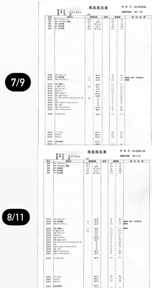 28DDB045-A7BD-4792-B8A3-4FBF49967BA0-e15bcd84
