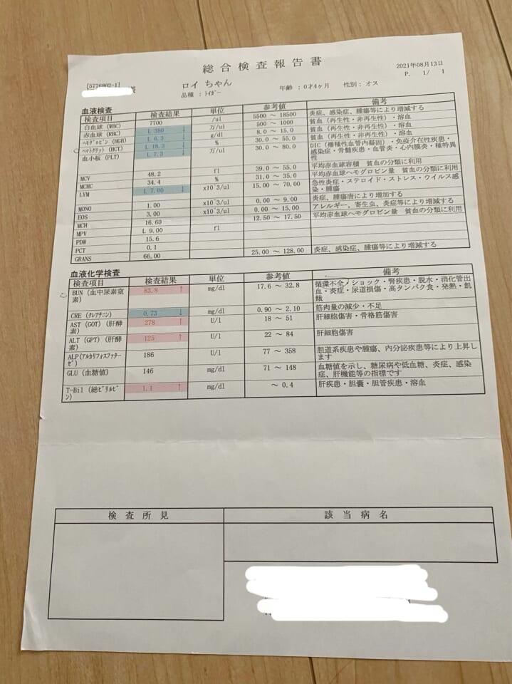 5C6EF79E-EF81-49E2-9788-5A93BFCD77E0-206ce2c6