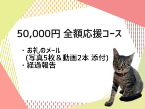 6EEFE80A-65E0-407A-B145-F07C4BB58AF2