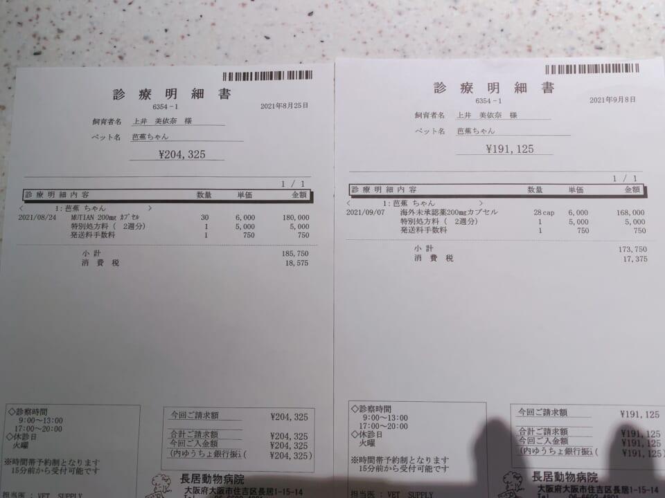 3B8F212B-3588-4755-A71B-5A028AB39373-3f6b79e7