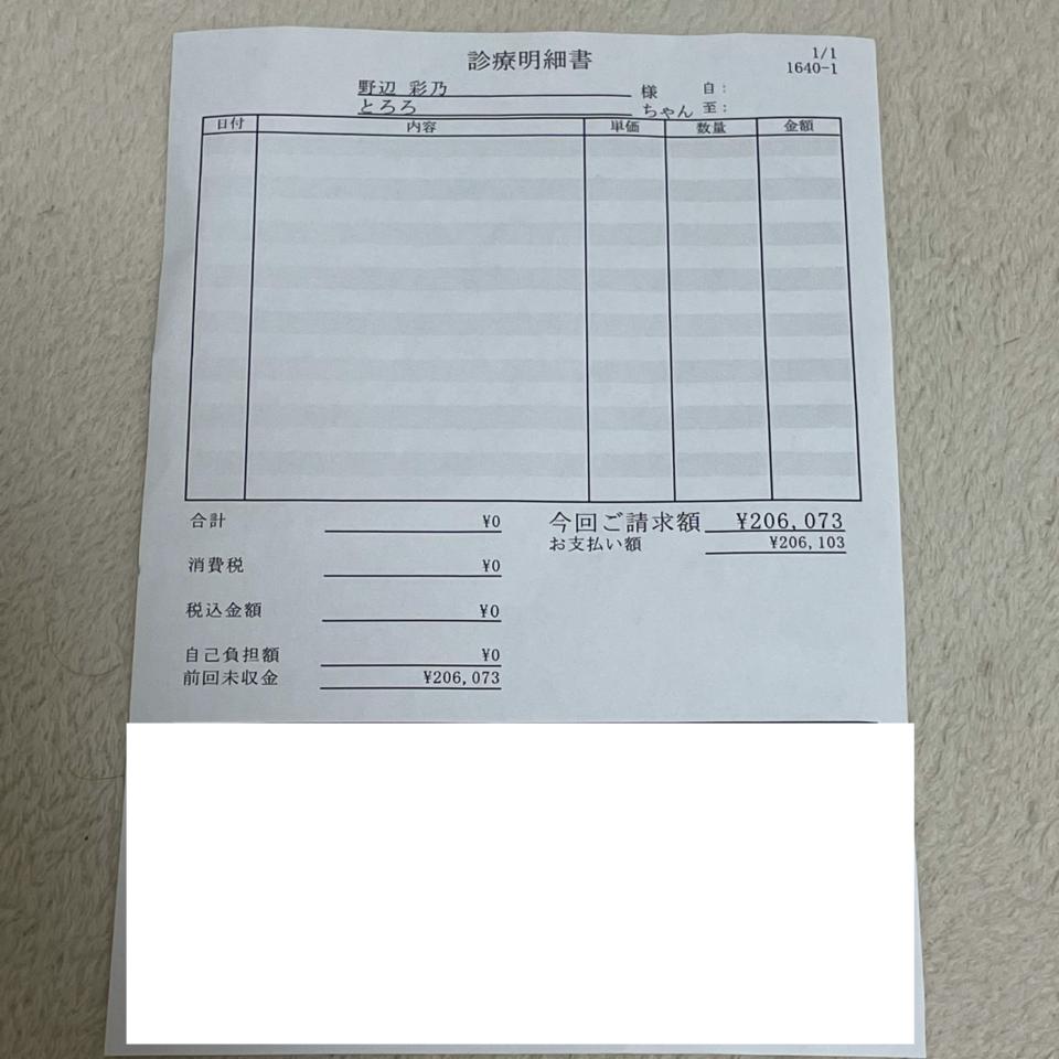 6E39FCC3-13AF-4467-AEC1-86D0104046D5-65b0a465