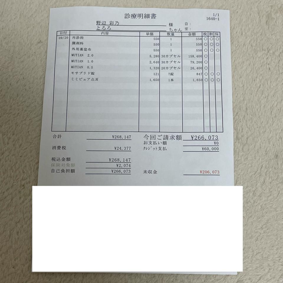 C0320E6B-5B65-4C15-B48F-D1FFC162FF46-9386169e