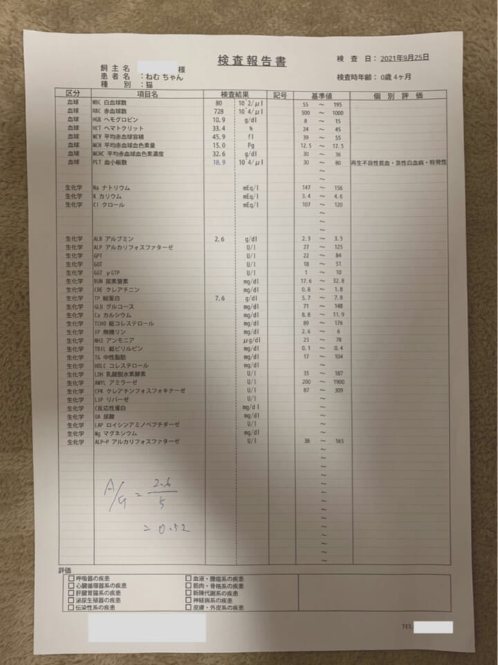 DA8D8602-ACA2-4928-BCD3-24EDB134A61C-e6c39ba2