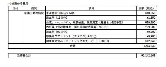 治療費2-167b2fe0
