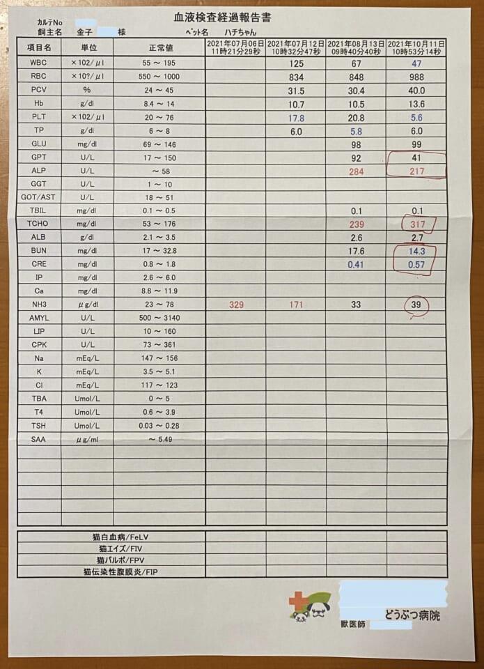 DFD20442-CD25-48A5-A335-C684567446EC-8a5dbf07
